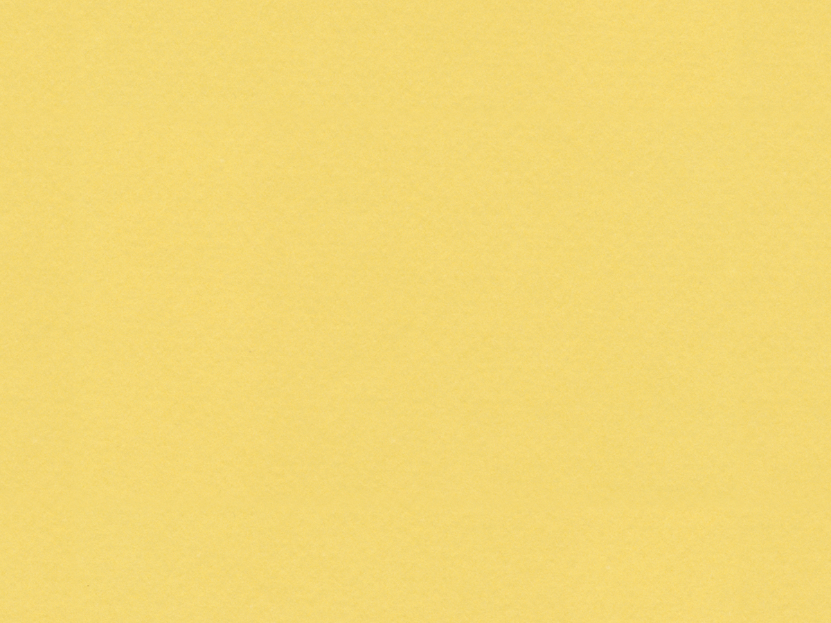 "Crescent Conservation Matboard<br /> Select - Standard Colors<br />Autumn Gold 40"" x 60"" 4-Ply"