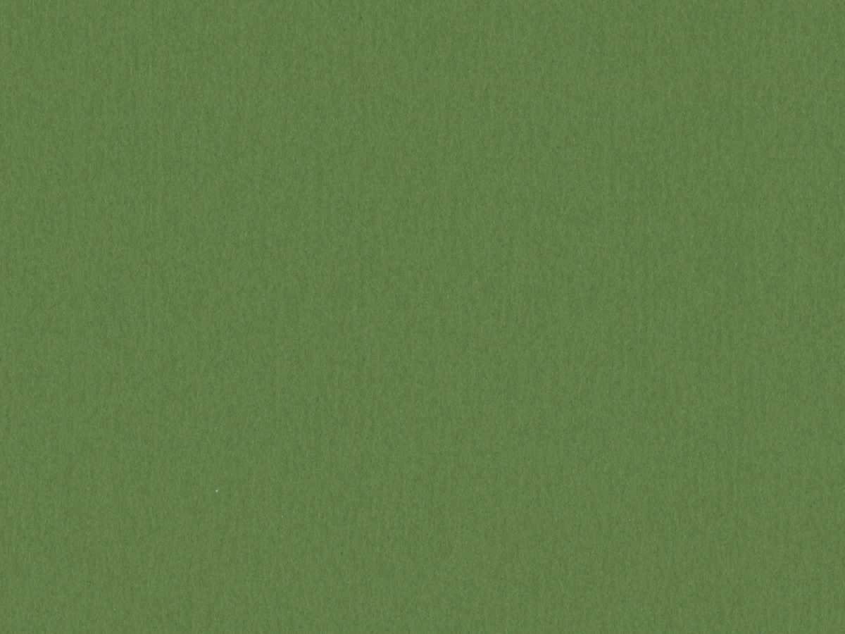 "Crescent Conservation Matboard Select - Standard - Spinach 32""x40"" 4-Ply"