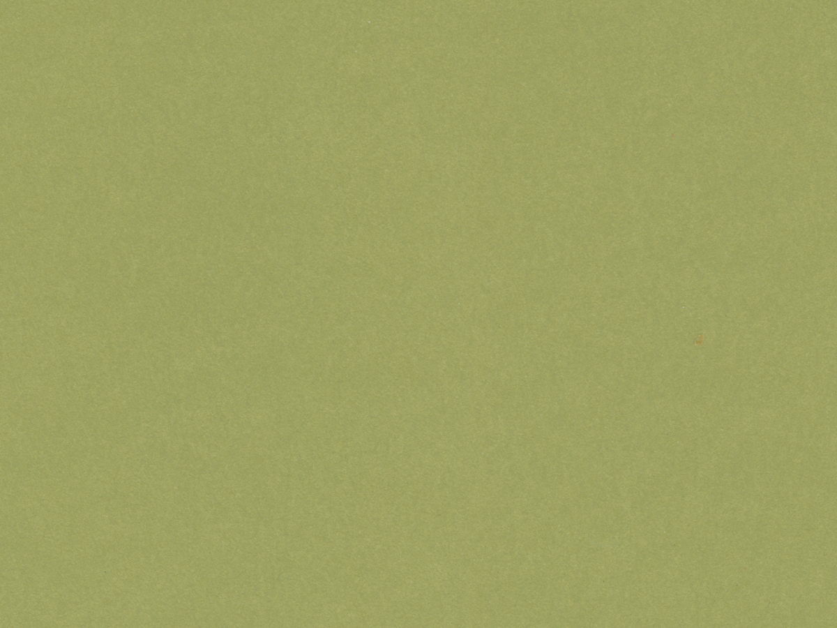 "Crescent Conservation Matboard<br /> Select - Standard<br />Guacamole 32"" x 40"" 4-Ply"