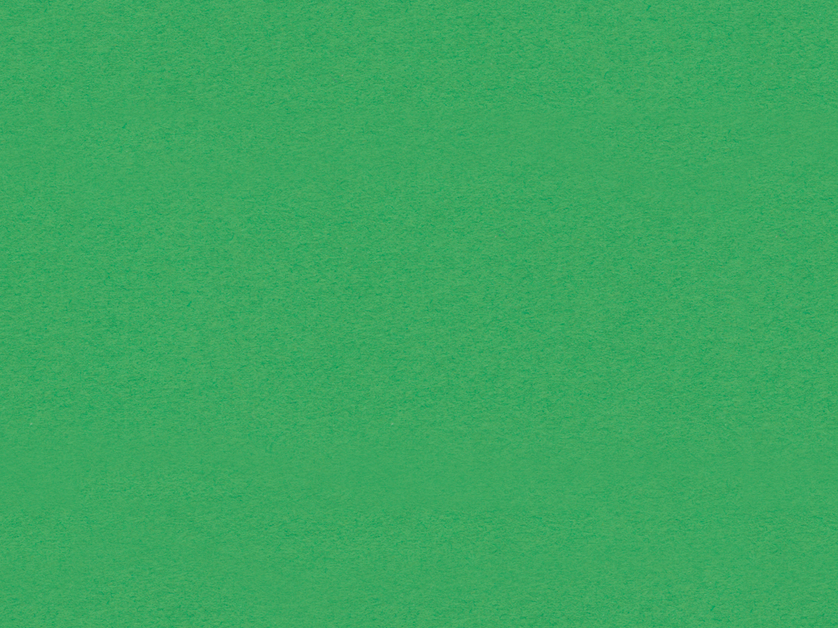 "Crescent Conservation Matboard<br /> Select - Standard<br />Irish Green 32"" x 40"" 4-Ply"