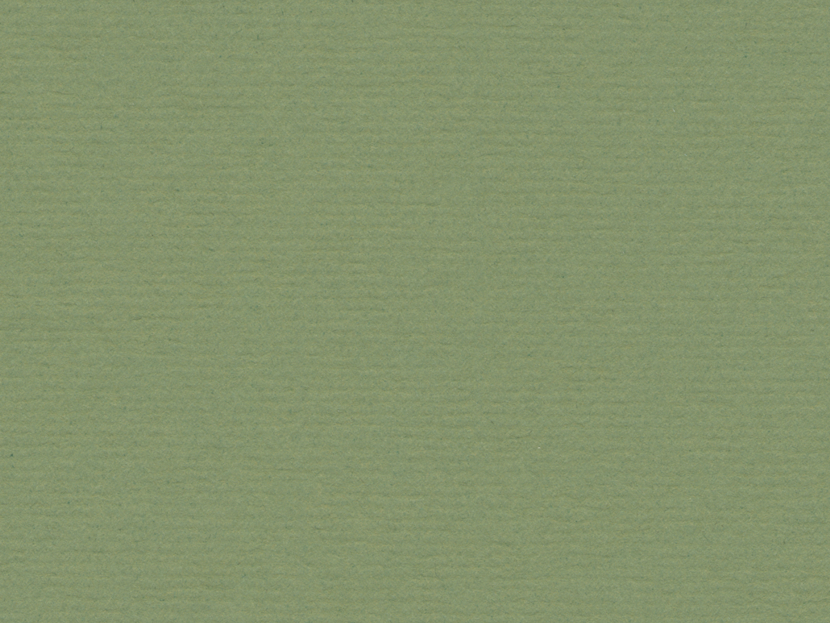 "Crescent Decorative Matboard International White Core - Moss Point Green 32""x40"" 4-Ply"